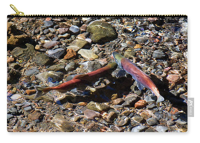 Animal Carry-all Pouch featuring the photograph Spawning Salmon - Odell Lake Oregon by Randall Ingalls