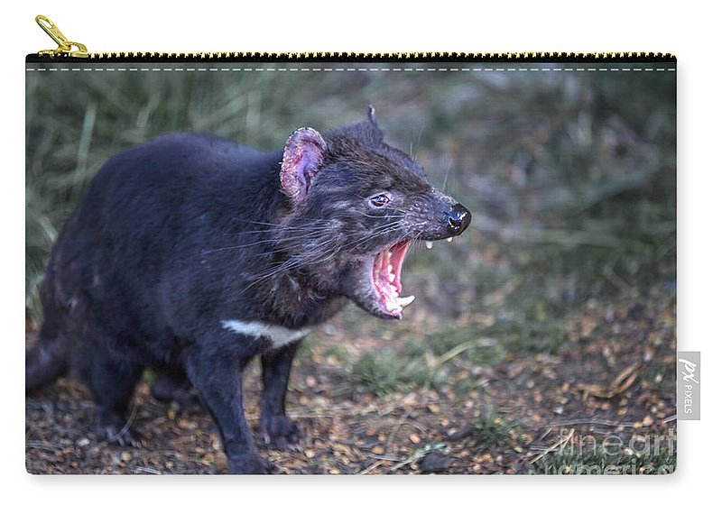 Kremsdorf Carry-all Pouch featuring the photograph Speak Of The Devil by Evelina Kremsdorf