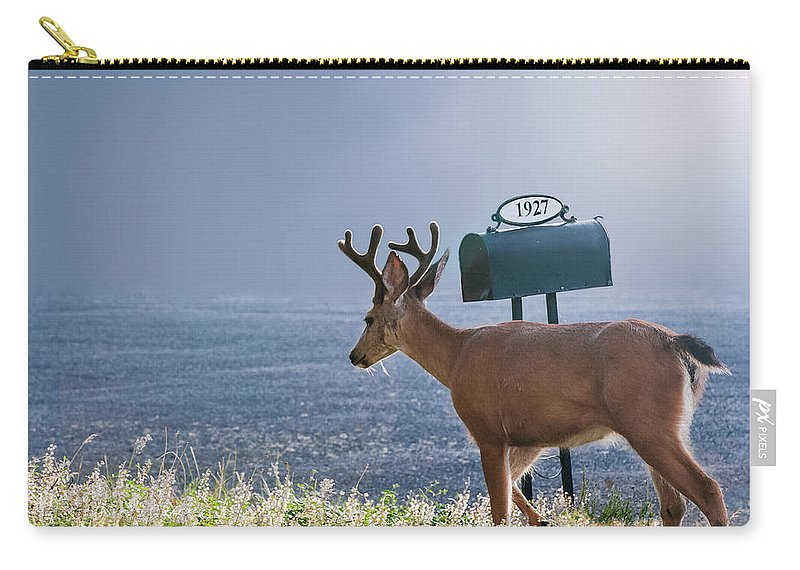 Deer Carry-all Pouch featuring the photograph Special Delivery by John Christopher