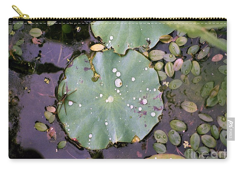 Lillypad Carry-all Pouch featuring the photograph Spider and Lillypad by Richard Rizzo