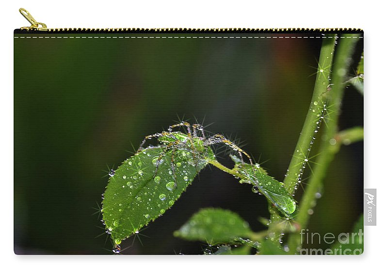 Clay Carry-all Pouch featuring the photograph Spider And The Shower by Clayton Bruster