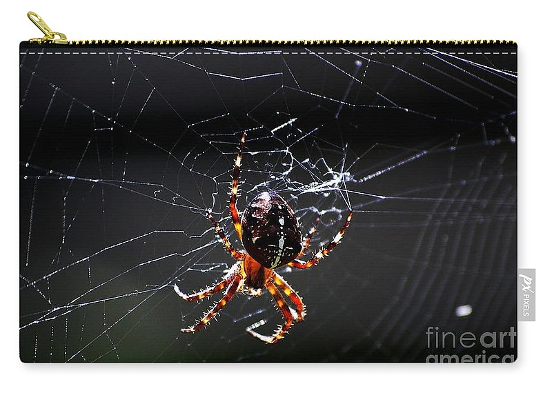 Digital Photo Carry-all Pouch featuring the photograph Spider by David Lane