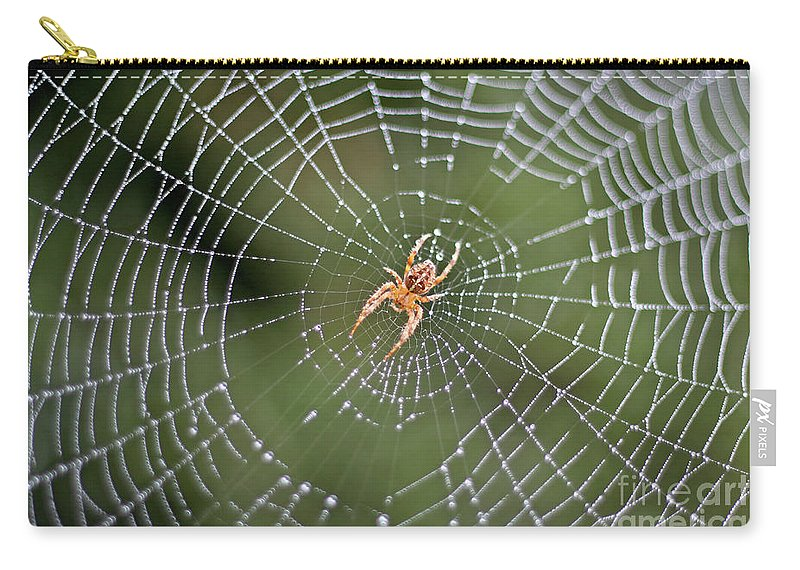 Spider Carry-all Pouch featuring the photograph Spider In A Dew Covered Web by Bruce Block