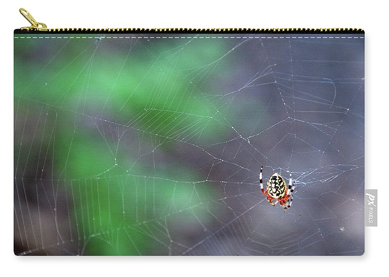 Animal Carry-all Pouch featuring the photograph Spider In Web by David Arment