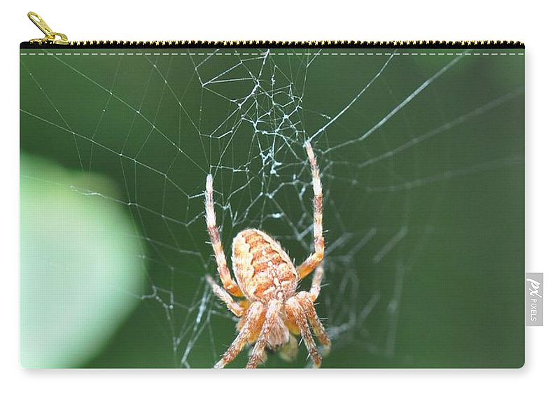 Spider Carry-all Pouch featuring the photograph Spider's Web by Eduard Meinema