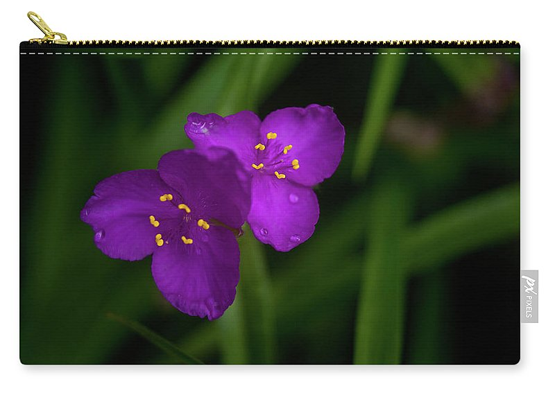 Spiderwort Carry-all Pouch featuring the photograph Spiderwort Couple by Douglas Barnett