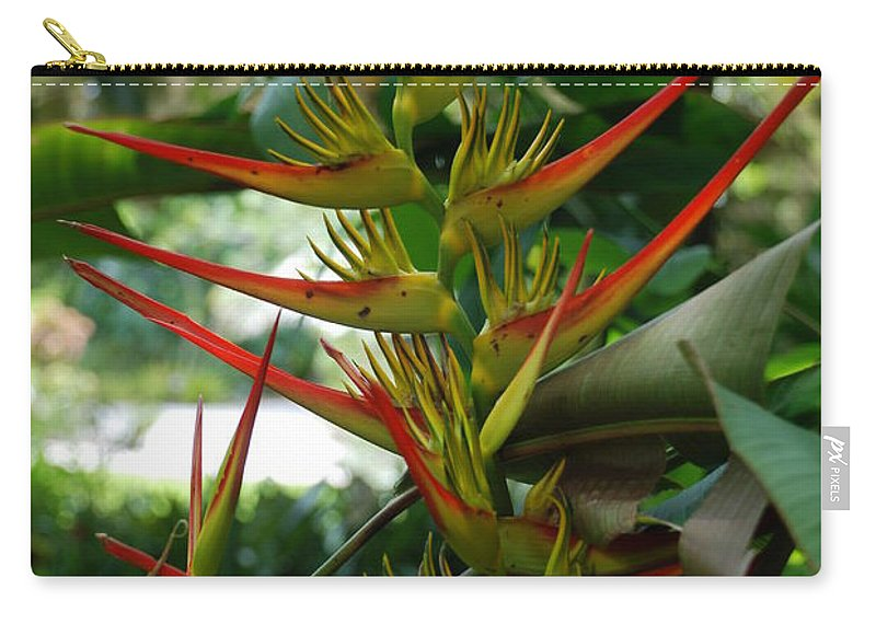 Spike Carry-all Pouch featuring the photograph Spike Plants by Rob Hans