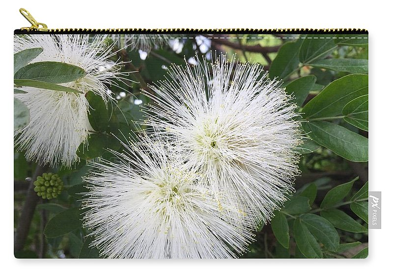 Spiky white flowers carry all pouch for sale by brigitta diaz flower carry all pouch featuring the photograph spiky white flowers by brigitta diaz mightylinksfo