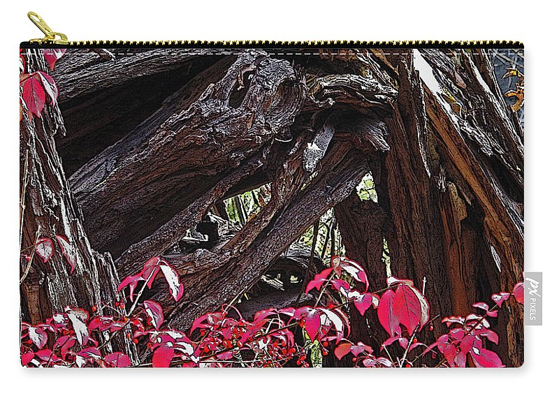 Red Carry-all Pouch featuring the photograph Splash Of Red by Ian MacDonald