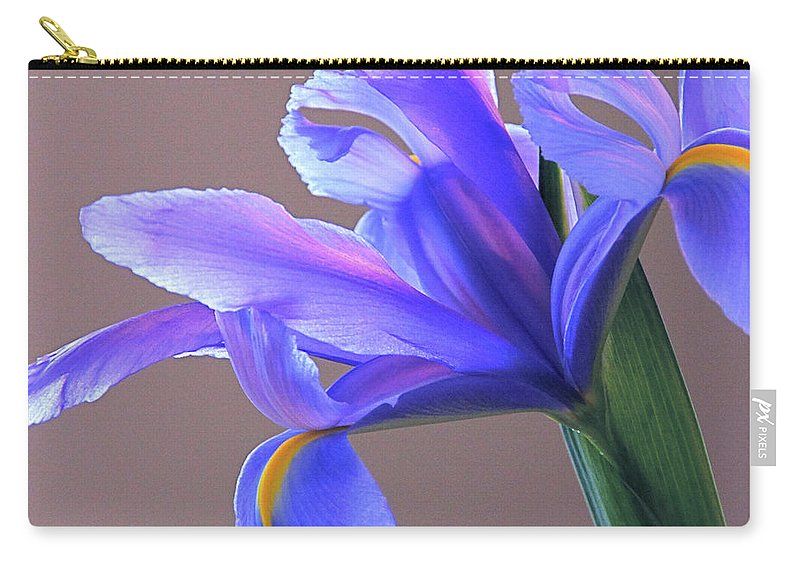 Iris Carry-all Pouch featuring the photograph Splendid Iris by Byron Varvarigos