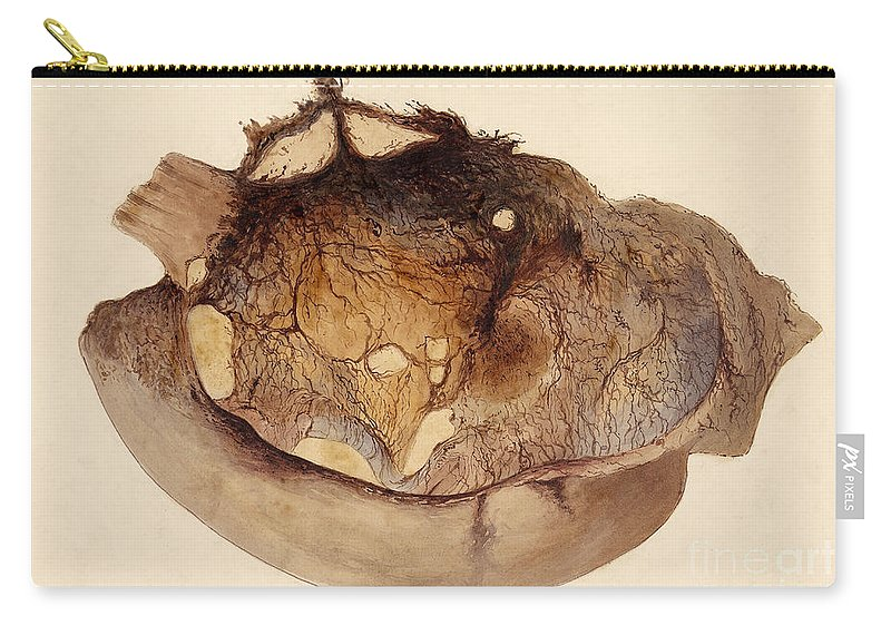 Historic Carry-all Pouch featuring the photograph Spontaneous Digestion, Stomach, 1848 by Wellcome Images