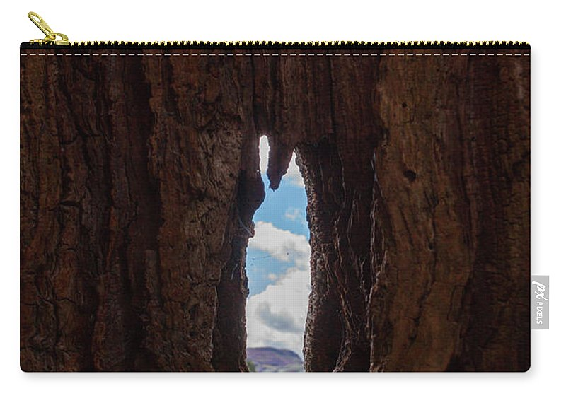 Cumbria Lake District Carry-all Pouch featuring the photograph Spot The Lake Shore View Through The Hollow Tree Trunk by Iordanis Pallikaras