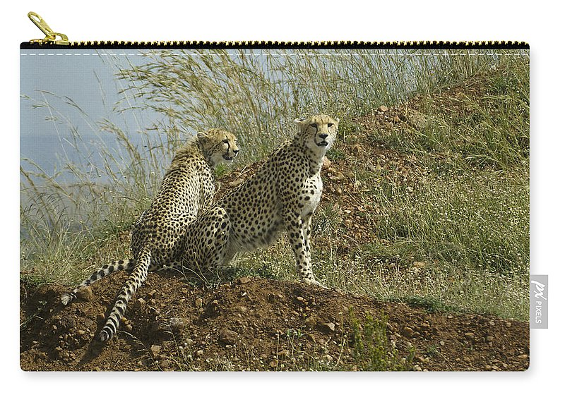 Africa Carry-all Pouch featuring the photograph Spotted Cats by Michele Burgess