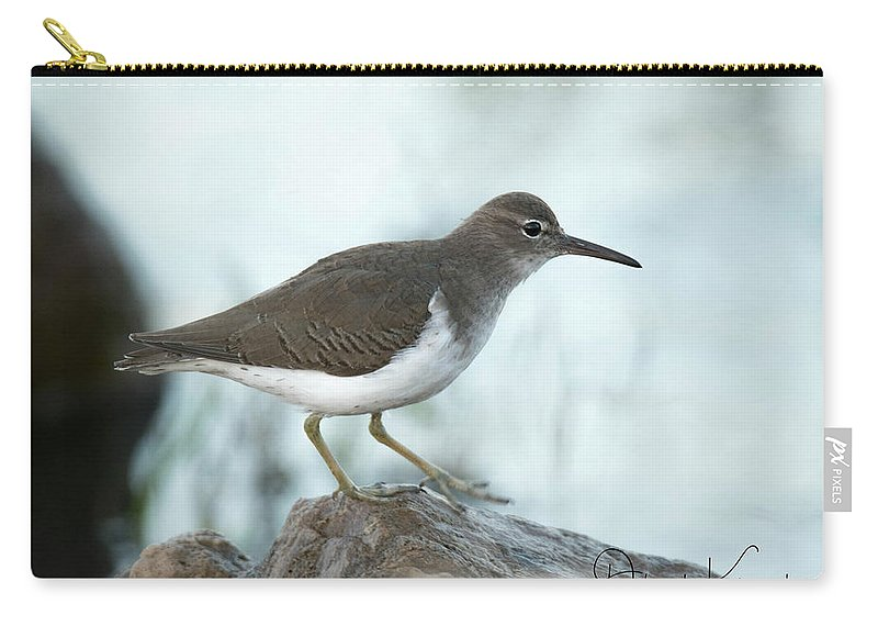 Florida Carry-all Pouch featuring the photograph Spotted Sandpiper by Deborah Kainauskas