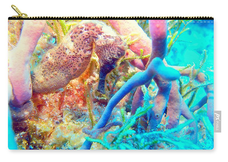 Carry-all Pouch featuring the photograph Spotty Seahorse by Todd Hummel