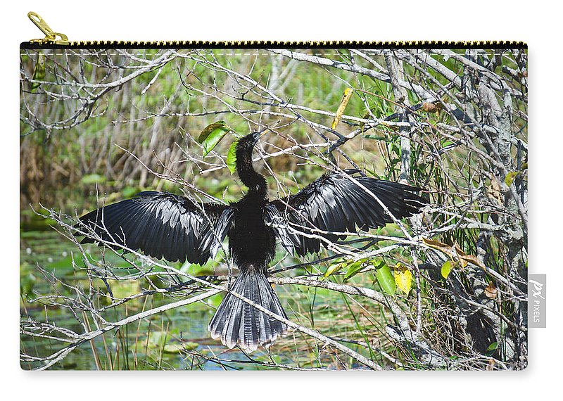 Darter Carry-all Pouch featuring the photograph Spreading Out by Judy Kay