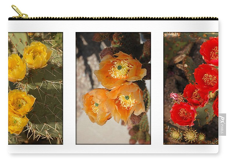 Arizona Carry-all Pouch featuring the photograph Spring - Desert Style by Jill Reger