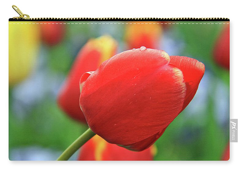 Flowers Carry-all Pouch featuring the photograph Spring Again by Scott Mahon