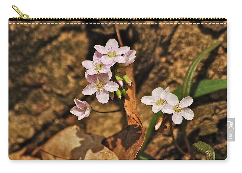 Spring Carry-all Pouch featuring the photograph Spring Beauty by Michael Peychich