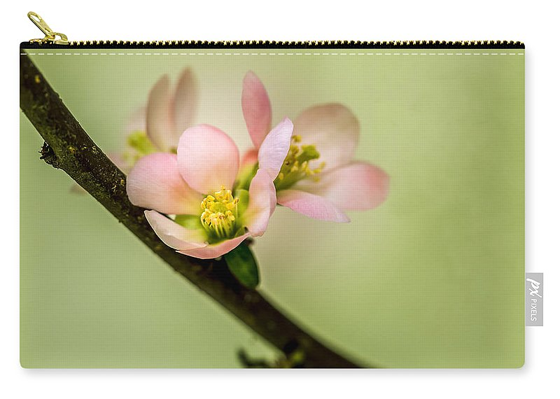 Cherry Blossoms Carry-all Pouch featuring the photograph Spring Blossoms by Jade Moon