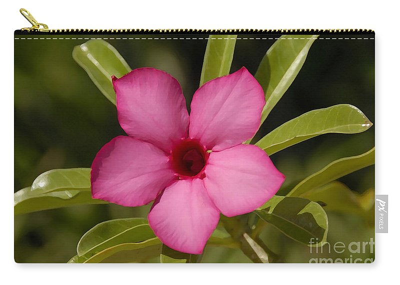 Spring Carry-all Pouch featuring the photograph Spring by David Lee Thompson