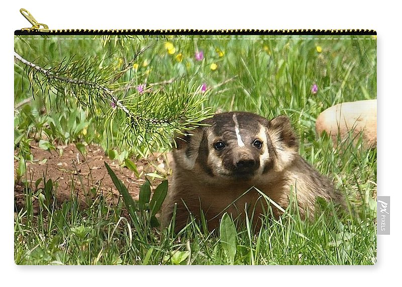 Badger Carry-all Pouch featuring the photograph Spring Fever by DeeLon Merritt