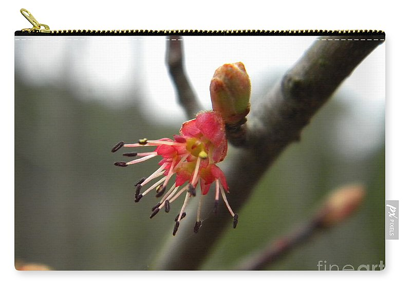 Spring Carry-all Pouch featuring the photograph Spring Flower Closeup 1 by Nathanael Smith