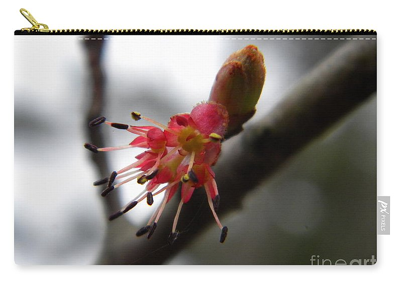 Closeup Carry-all Pouch featuring the photograph Spring Flower Closeup 2 by Nathanael Smith
