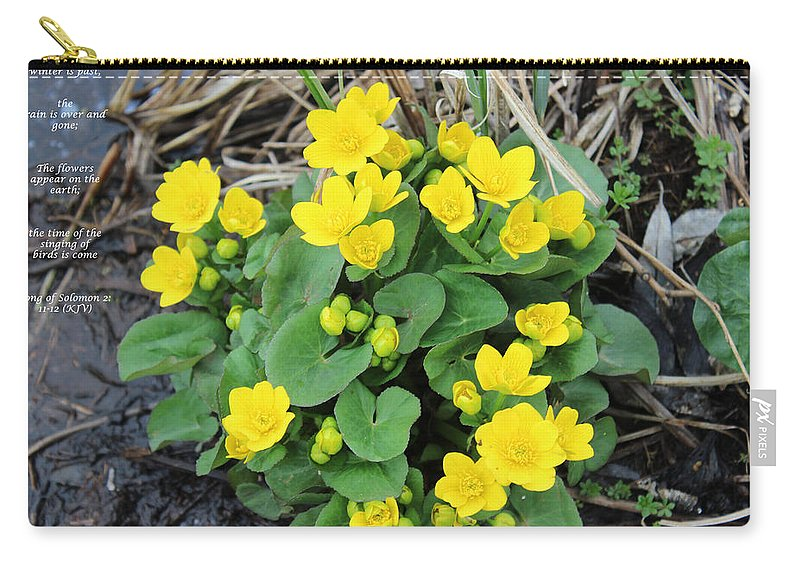 Valley Carry-all Pouch featuring the mixed media Spring Flowers by Cliff Ball