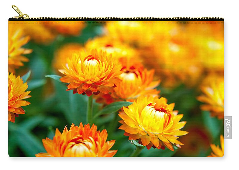Spring Flowers Carry-all Pouch featuring the photograph Spring Flowers In The Afternoon by Az Jackson