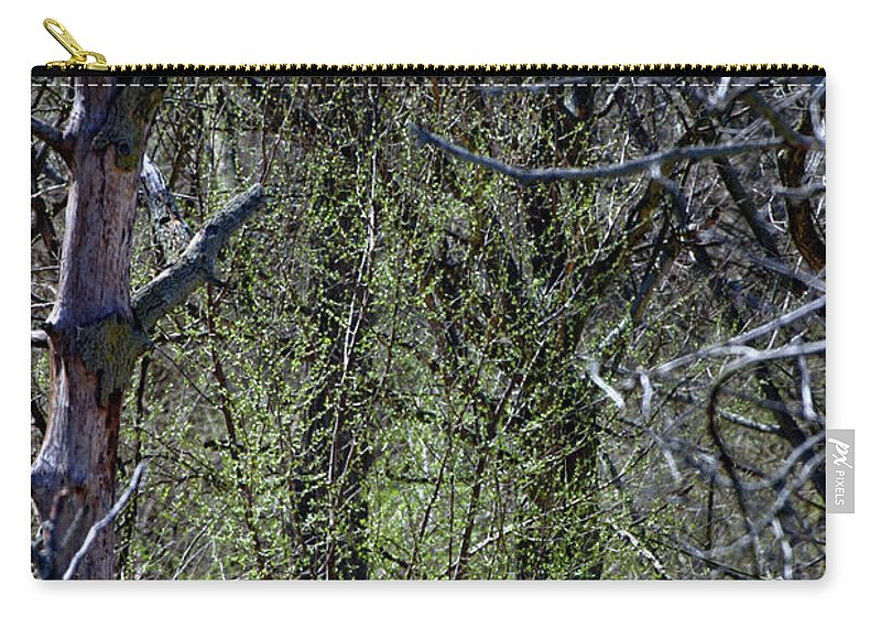 Background Carry-all Pouch featuring the photograph Spring In The Timber by Alan Look