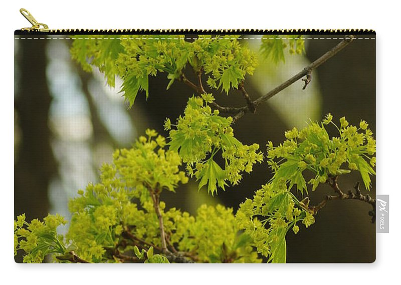 Trees Carry-all Pouch featuring the photograph Spring by Jeffery L Bowers