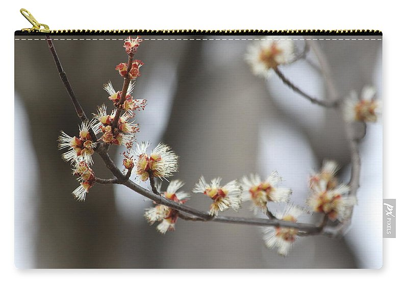 Buds Carry-all Pouch featuring the photograph Spring by Lauri Novak