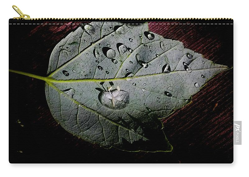 Rain Carry-all Pouch featuring the photograph Spring Rain by Aurora Bautista