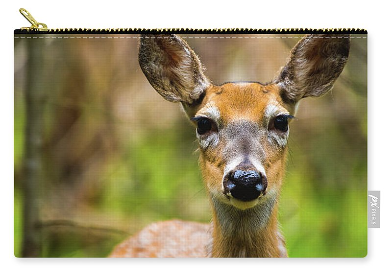 Whitetail Carry-all Pouch featuring the photograph Spring Shed by Michael Tucker