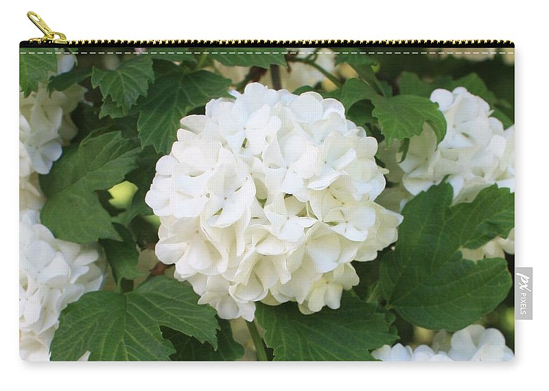 Snowball Tree Carry-all Pouch featuring the photograph Spring Snowball by Carol Groenen