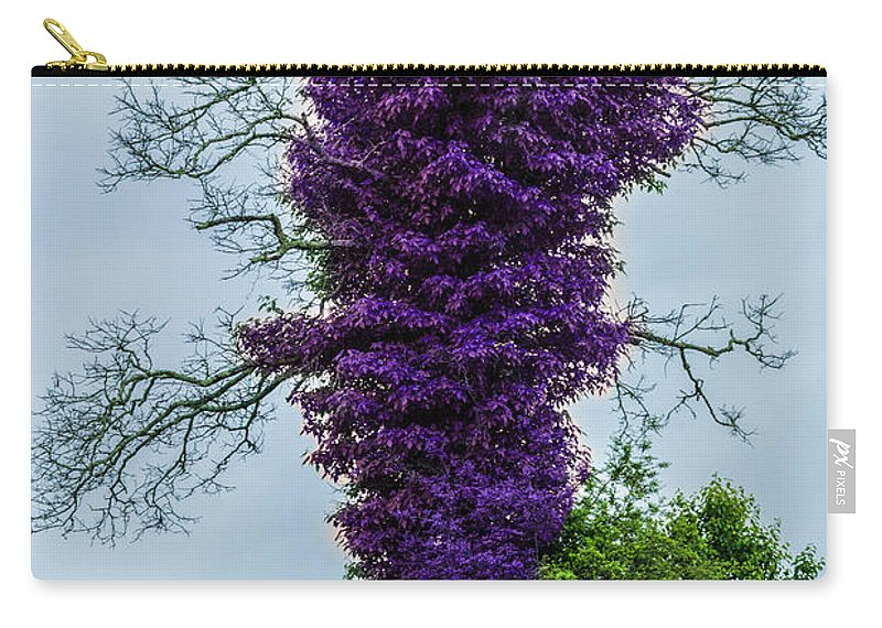 Tree Carry-all Pouch featuring the photograph Spring Tree by James Hennis