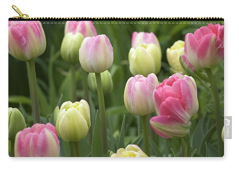 Spring Carry-all Pouch featuring the photograph Spring Tulips by Monique Cousineau