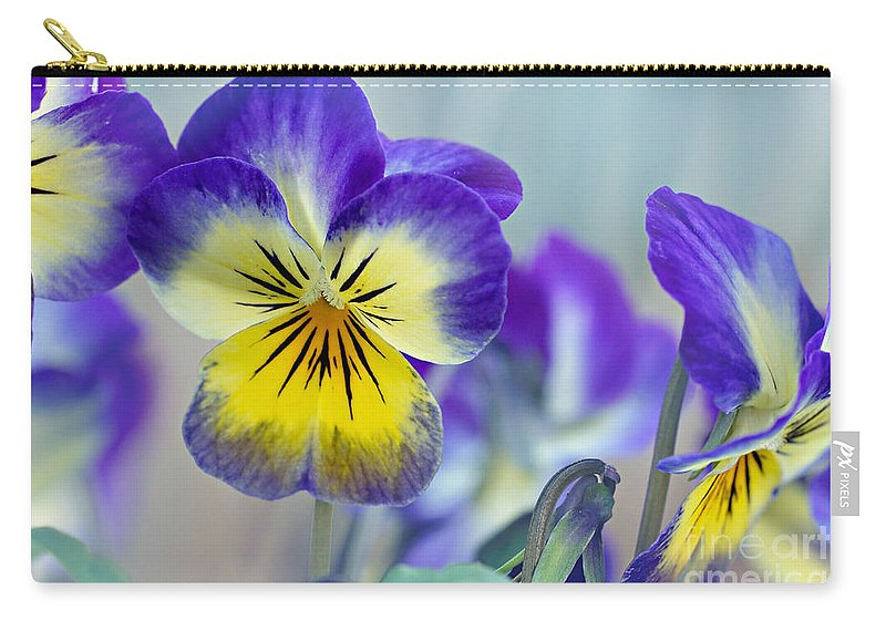 Pansies Carry-all Pouch featuring the photograph Spring Violas by Susan Garver