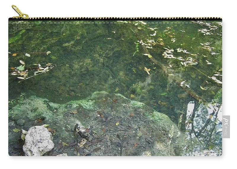 Grotto Carry-all Pouch featuring the photograph Spring Water At The Grotto by D Hackett
