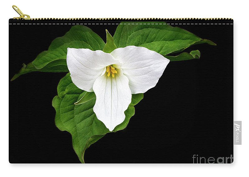 White Carry-all Pouch featuring the photograph Spring's Beauty by Emma England