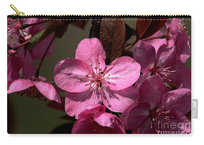 Flower Carry-all Pouch featuring the photograph Springs Bloom by Roger Becker