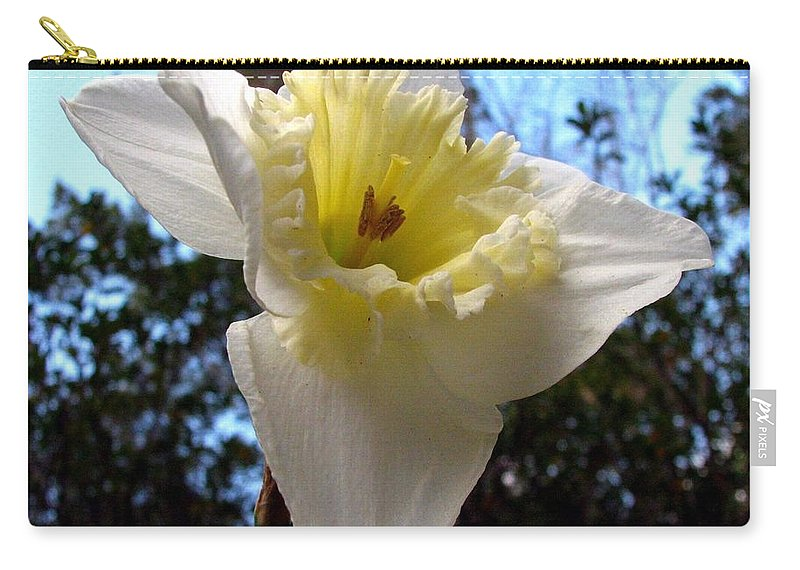 Daffodil Carry-all Pouch featuring the photograph Spring's First Daffodil 2 by J M Farris Photography