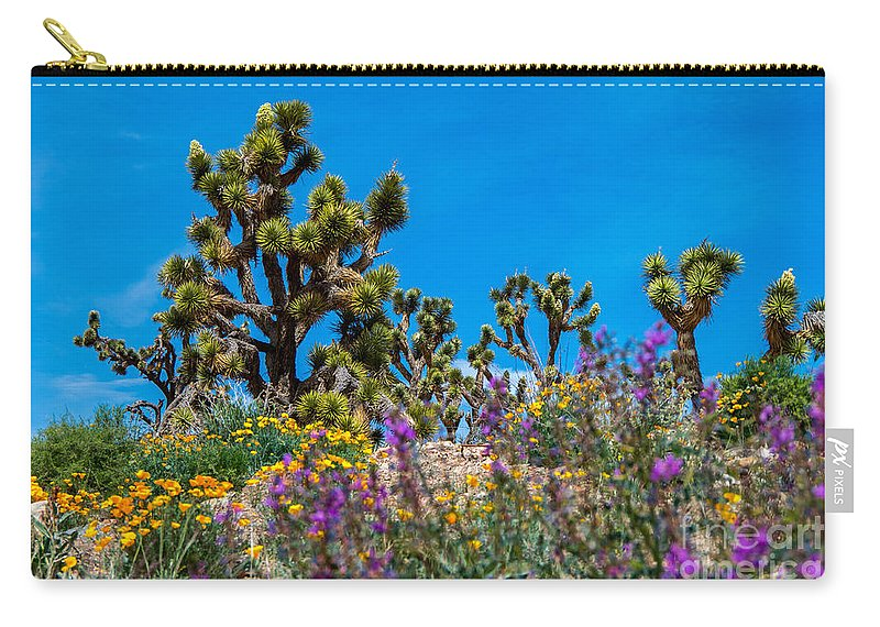 Joshua Trees Carry-all Pouch featuring the photograph Springtime At The Canyon by Stephen Whalen
