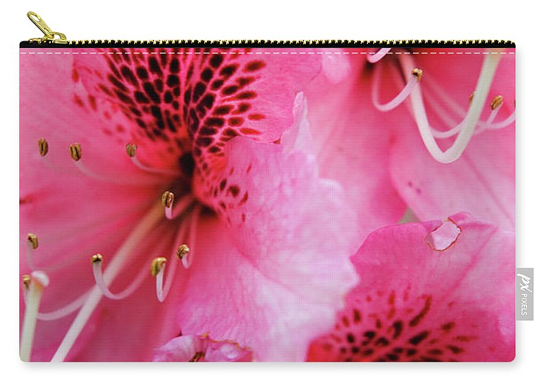 Oregon Carry-all Pouch featuring the photograph Springtime Azalea by Renee Hong