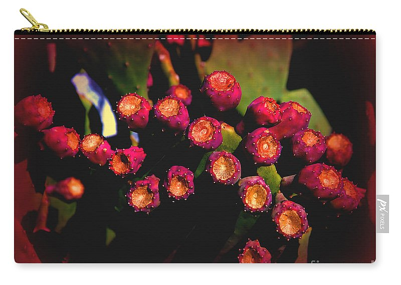 Cactus Carry-all Pouch featuring the photograph Springtime Cacti by Susanne Van Hulst