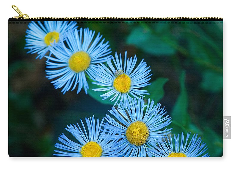 Grand Teton Carry-all Pouch featuring the photograph Springtime In Grand Teton by Sandra Bronstein