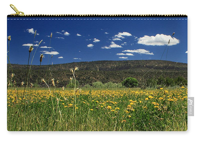 Landscape Carry-all Pouch featuring the photograph Springtime In Hat Creek by James Eddy