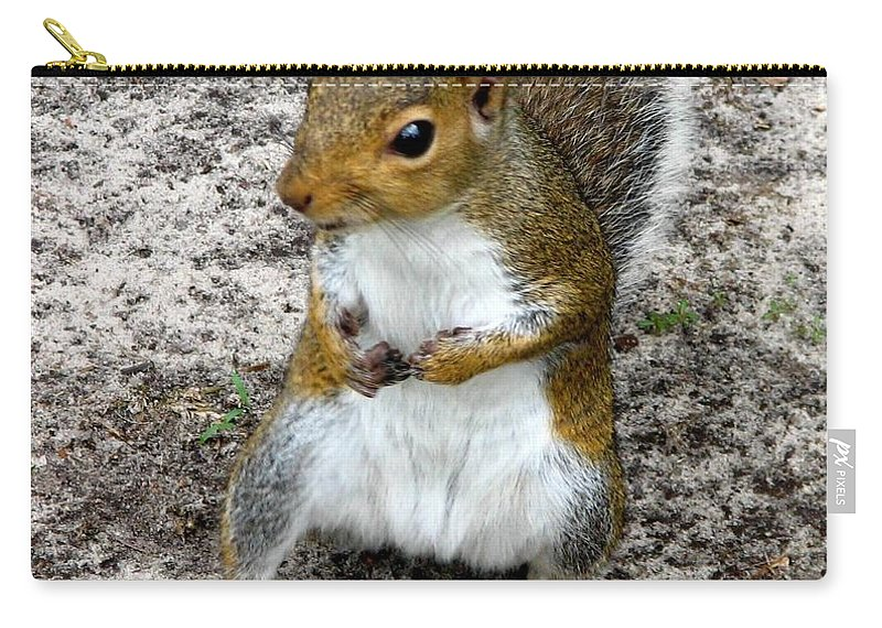 Squirrel Carry-all Pouch featuring the photograph Squirrel 2 by J M Farris Photography