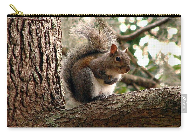 Squirrel Carry-all Pouch featuring the photograph Squirrel 9 by J M Farris Photography